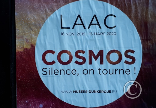 affiche-laac-cosmos-136809