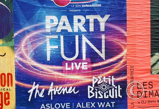 affiche-party-fun-136763